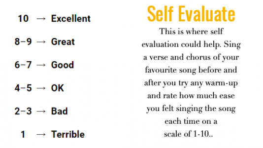 self evaluate vocal warm up